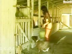 Horse sex whores 10