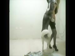 Animal Passion - Fucking Dog Scenes Part 10
