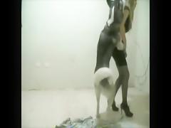 lilp - dogcumpart2