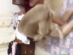 Con el perro en la webcam